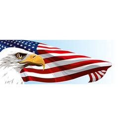 Usa eagle flag vector