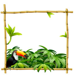 Bamboo tropical frame vector