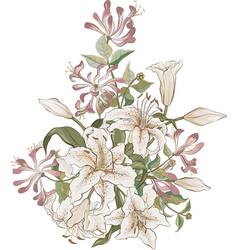 Bunch lilies and honeysuckle vector