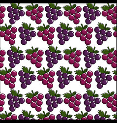 Delicious grape fruit background icon vector
