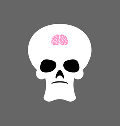 Skull and small brain x-ray stupid little mind vector