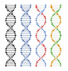 DNA Genome Molecules Set vector image
