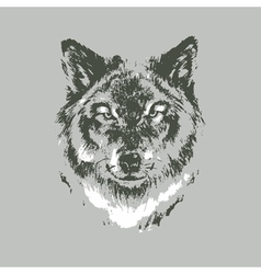 Hand drawn wolf sketch vector image