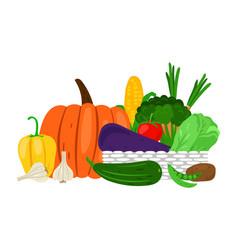 harvest garden vegetables on white vector image