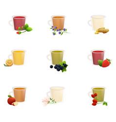 natural fruit herbal black green chinese tea vector image