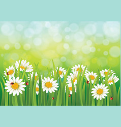 spring background with dais vector image