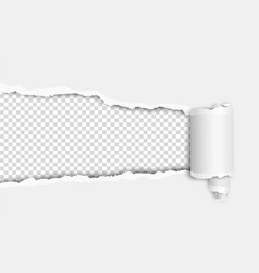 Torn elongated hole in white sheet with wrapped vector