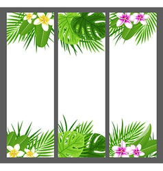 Vertical tropical banners with flowers vector image