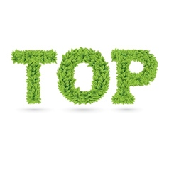 Top text of green leaves vector image