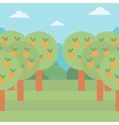 Background of orange trees vector image