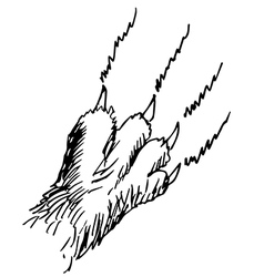 Claw vector