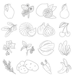 Coloring book set of fruits and vegetables vector