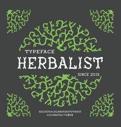font herbalist hand crafted vector image
