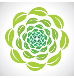Green leaf swirl design vector
