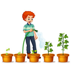 man watering plants in garden on white vector image