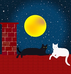 Black and white cats on the roof vector image vector image