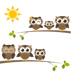 brown owls and owlets on the tree vector image