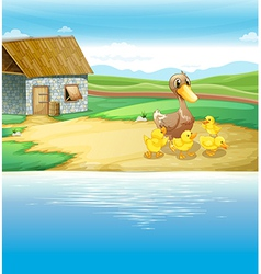 A family of duck near the river vector