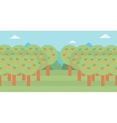 Background of orange trees vector