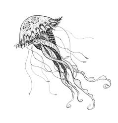 Doodle sketch medusa jellyfish black line vector