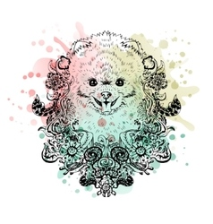Spitz graphic dog abstract vector