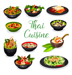 Thai cuisine soup salad and spring roll dishes vector