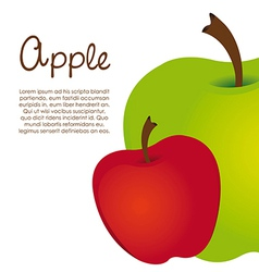 apple design on white background vector image