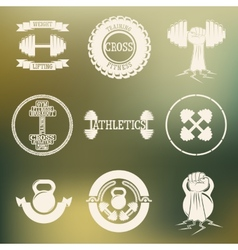 Cross Training and GYM logo white vector image vector image