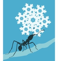 Snowflake ant vector image vector image