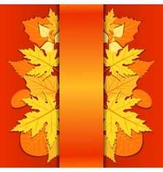 lace paper background with autumn leaves vector image