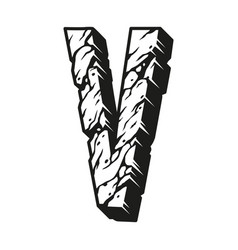 desert design letter v concept vector image