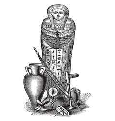 Mummy coffin was typically wrapped in linen vector