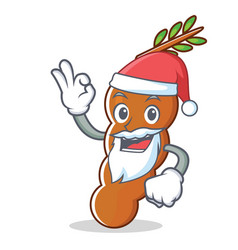santa tamarind mascot cartoon style vector image