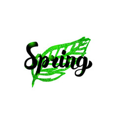 Spring green leaf inscription vector