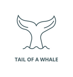 tail a whale line icon linear concept vector image