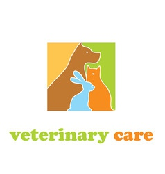 veterinary care vector image