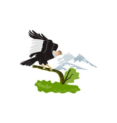 Vulture Buzzard Bird vector