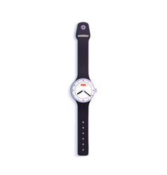 watch on white background vector image