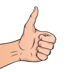Cartoon thumbs up vector image