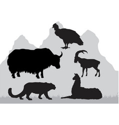 mountain area animals vector image vector image