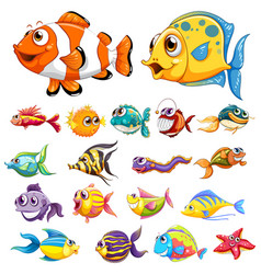 different types of fish vector image vector image