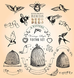 Birds bees and banners set vector