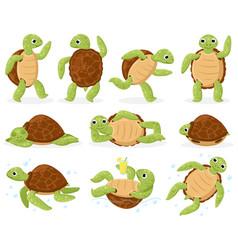 Cartoon turtle cute sea tortoise swimming vector