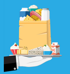 dairy products set collection milk food vector image