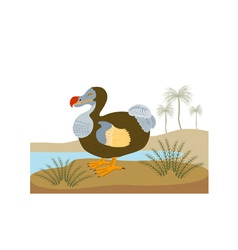 Dodo Bird Raphus Cucullatus Retro vector image
