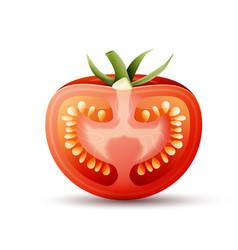 Half tomato vector