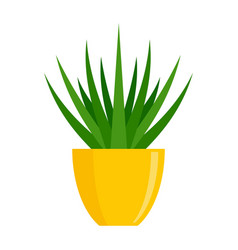 Succulent flower pot icon flat style vector