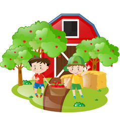 Two boys working in the orchard vector
