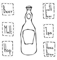 beer bottle hand drawn vector image vector image