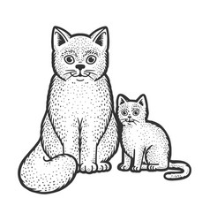 cat mom with kitten sketch vector image